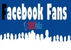 provide +200 Real Facebook Fans on your Facebook page 