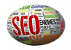 give you service of Senuke X,Mnf,SEO powersuite,Market Samurai,Article Submitter and Many More with Huge Bonus stuff