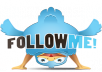 provide ★1000+ twitter followers★ to any twitter account