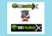 use Senuke X to creates over 2000 ++ Top Quality Backlink on High Pages Rank Sites