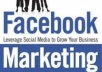 get u 1200+ Facebook Page Likes within 20 hours