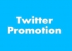 add 12,000 guaranteed twitter followers Or 1000 facebook fans to your fan page in less than 48 hours without admin access