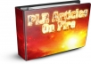Give You 20,000 PLR Articles On Several Niche