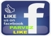 give you 100+100+100+100 facebook fan page like without password