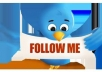 give you 111 twitter followers in 24 hours