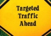 deliver laser targeted TRAFFIC to your websites by making a software and then submit it to 300 very high pagerank directories boosting your rank