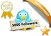 Get u 5,000+ TWITTER Followers Only