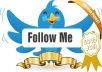 Get 31,000+ [31k] twitter FOLLOWERS