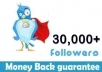 provide 30,000 Real Human Twitter Followers On Your Twiitter Account In 10 Hour / Without Your Pasword