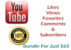 Offer you a BUNDLE YOUTUBE Package with 333k+ views