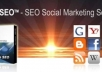 run a XGen SEO Campaign for your website to dominate top ranking in google  its very cheap just