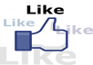 give you 1000+ facebook likes all are real and different standard human in your fan page/site/post etc....