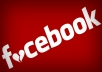 Give You 2000 USA Base Fake Facebook likes, Fans to Your Fanpage
