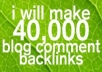 make 40,000 blog comments linkjuice and add 6 high PR social bookmarks like digg, delicious etc