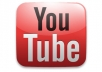 Offer you 2,000 + views for your youtube video