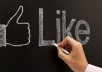 give 2500+ facebook page like of orignal users