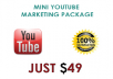 offer Mini Youtube Marketing package With 75k + Views