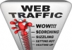 deliver real human TRAFFIC to your website for 365 days just