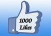Give You 1000 Real Facebook Likes For Your Fan Page