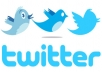Give You 25000 Twitter Followers To Your Account in 5hr