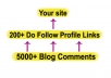 build more than 200 DOFOLLOW Profile Links from high pr forums and create more than 5000 blog comments to them for massive juice to your url