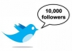 add 10000 twitter followers in your twitterr account within 1 day MAX