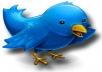 Increase 25,000+++ Real Looking Twitter Followers to Your Account Without Password for