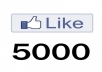 give you 5000 Real Active facebook likes for your fanpage