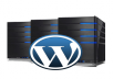 Give you Premium wordpress hosting for one month