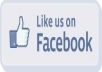 give you 1500 real facebook likes to your fanpage in less than 24 hours without admin access just