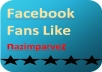 give you minimum 150+ facebook fans insistent now nor money return to buyer Guaranteed