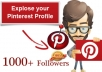 I will provide you 1000 real pinterest followers