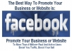 promote your Business or website to 4,45,749 Real and Active Facebook Users