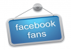 increase facebook fans by giving over 1000 likes to NEW fan page without admin