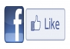 give you 121 facebook like or FB fan