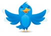 provide you ★25,000★ twitter followers