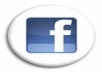 get you 110++ REAL Human Facebook likes to your fanpage
