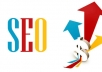 Improve Your Site Rank With One Month Professional Monthly SEO service