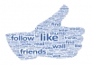 get you 5000+ REAL Human Facebook likes to your fanpage