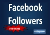 give you 100+100+100 real facebook Followers !!! 100% real not bot !!!