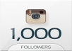 give 1000+ High Quality Followers OR 1000+ Likes(1-10Pics) on Instagram Account