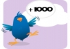 Get +1000 [1k] twitter FOLLOWERS [Very Fast]