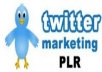 give you twitter PLR, Sales Page, Squeeze Page, Graphics, PSDs, MiniSite