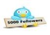 Give You 4500 usa uk and canadian Real Twitter Followers In Your Twitter Account Without Password  within 1 day