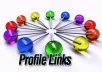 make 30 High Page Rank as well as quality Profile links