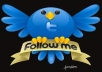 give you 100 Twitter Folowewrs on your  Site only