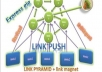 make link PUSH which contain pyramid + linkmagnet +rss +4000 backlinks point to all web 2 properties