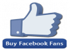 provide 250 Quality facebook likes that stay FOREVER for