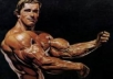 2)	How are bodybuilding contests judged