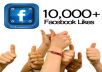 I will give you 10000 Active Facebook Likes